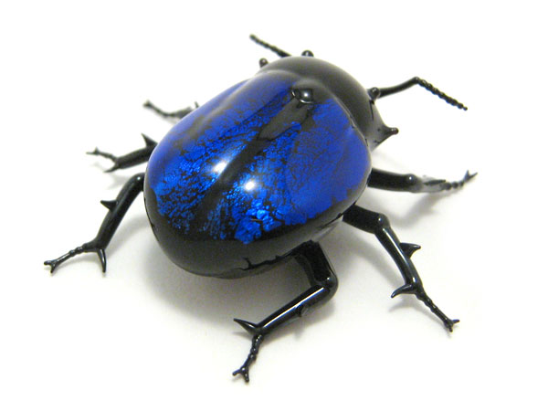 Beveled Beetle - Jade Regent